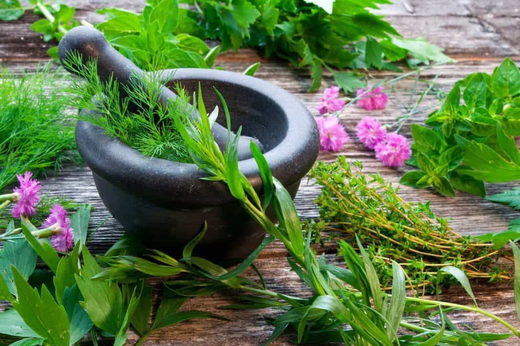 Herbs to Cure Hair Loss