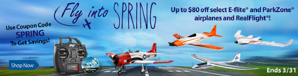 Fly Into Spring